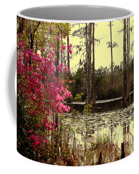 Springtime Coffee Mug featuring the photograph Springtime In The Swamp by Susanne Van Hulst