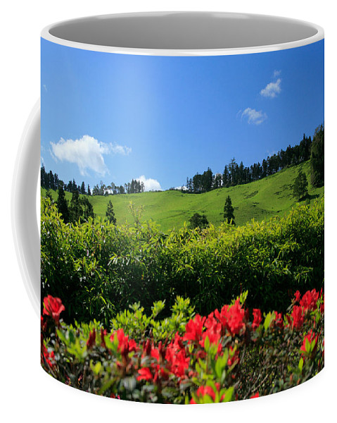 Countryside Coffee Mug featuring the photograph Springtime Landscape by Gaspar Avila