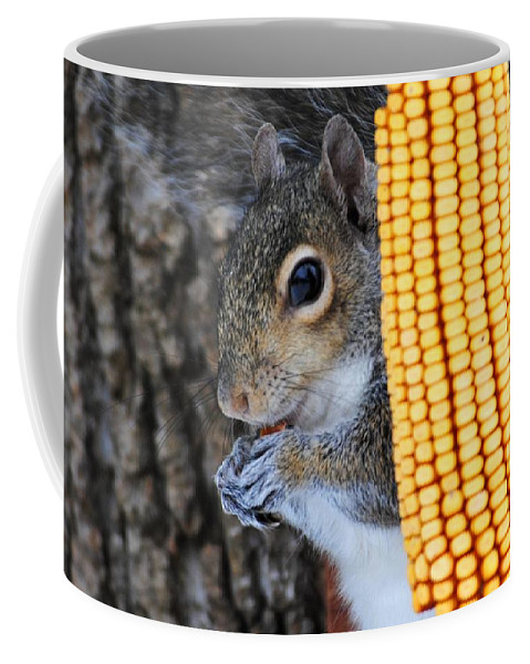 Squirrel Coffee Mug featuring the photograph Squirrel Portrait by Jai Johnson