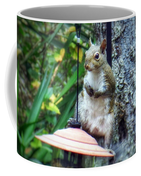 Squirrel With Attitude Coffee Mug featuring the photograph Squirrel Portrait by John Myers