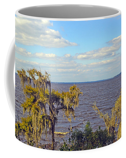 River Coffee Mug featuring the photograph St. Johns River Meets The Ocean by Kenneth Albin