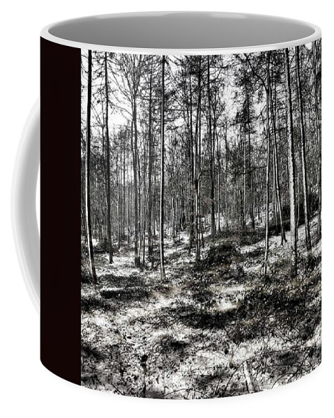 Stlawrenceswood Coffee Mug featuring the photograph St Lawrence's Wood, Hartshill Hayes by John Edwards