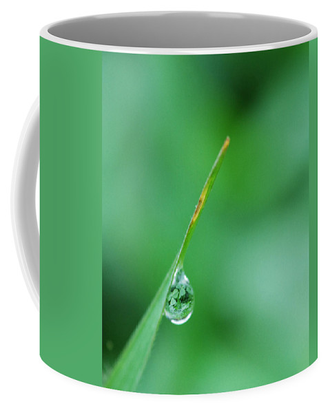 Grass Coffee Mug featuring the photograph St. Patrick's Day by Donna Blackhall