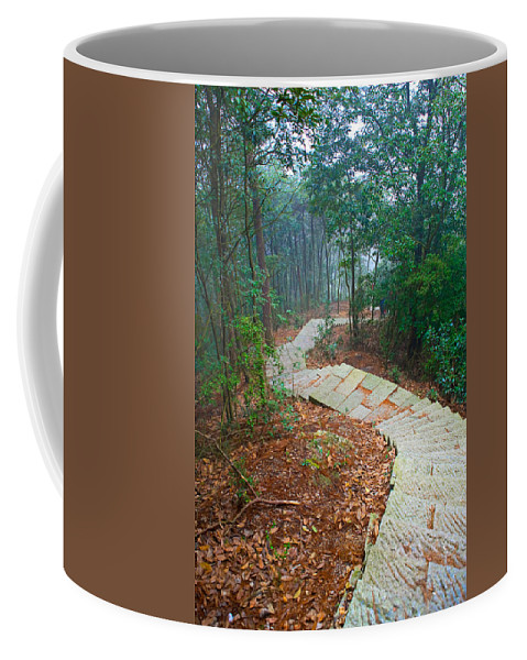 Trees Coffee Mug featuring the photograph Stairs Down Mountain by James O Thompson