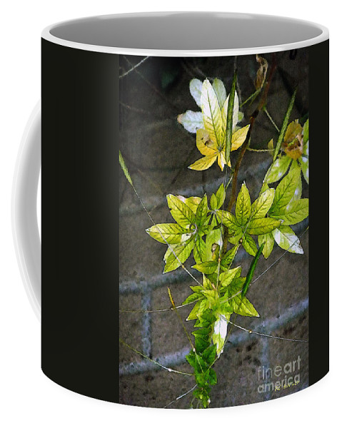 Autumn Coffee Mug featuring the painting Stalk With Seed Pods by RC DeWinter