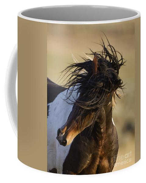 Wild Horse Coffee Mug featuring the photograph Stallion's Head Shake by Carol Walker