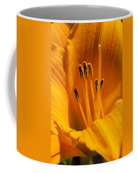Flowers Coffee Mug featuring the photograph Stamens by Kelley King