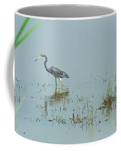 Great Blue Heron Coffee Mug featuring the photograph Standing In The Marshes by Robert Brown