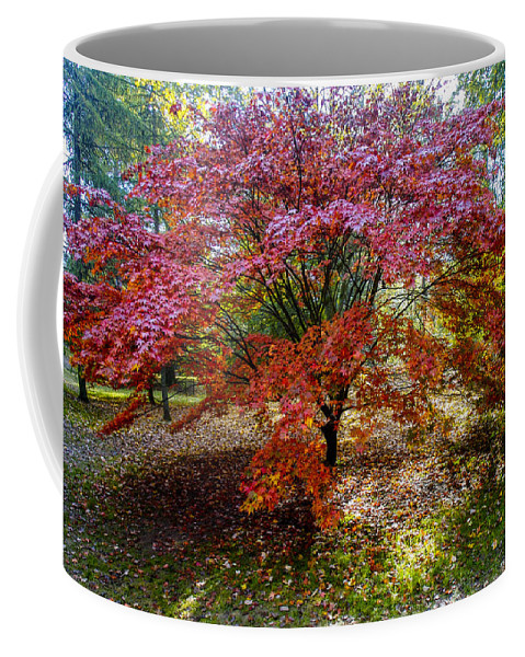 Landscape Coffee Mug featuring the photograph Standing Out From The Crowd by Christopher Rees