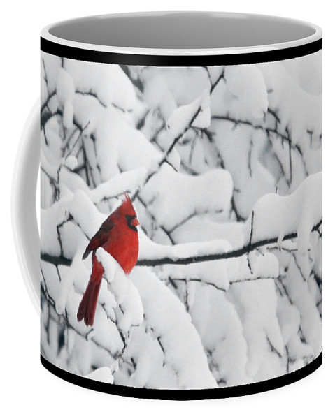 Photography Photographer Cardinal Red Bird Snow Season White Winter Scene Coffee Mug featuring the photograph Standing Out by Shari Jardina
