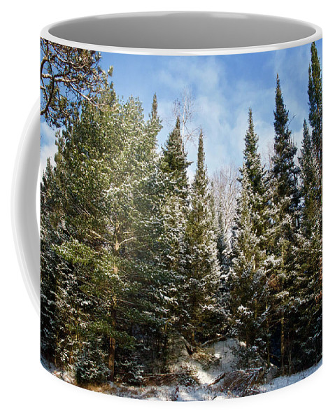 Trees Coffee Mug featuring the photograph Standing Tall 4832 by Michael Peychich