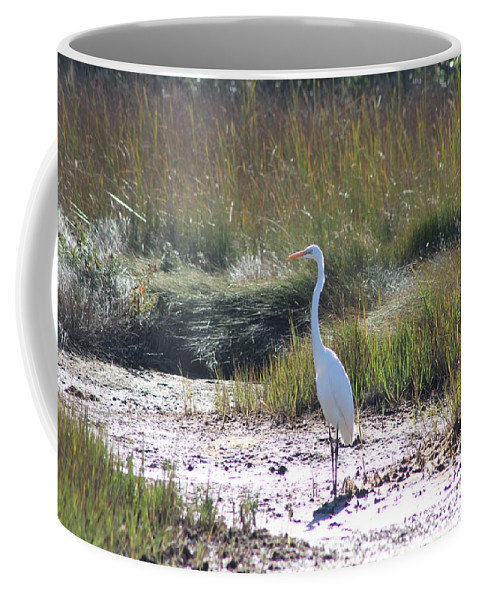 Heron Coffee Mug featuring the photograph Standing There by Modern Art