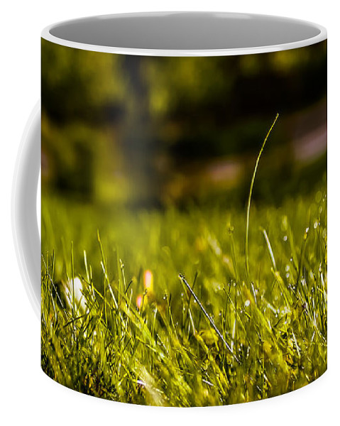 Spring Coffee Mug featuring the photograph Standing Up by Claudia M Photography