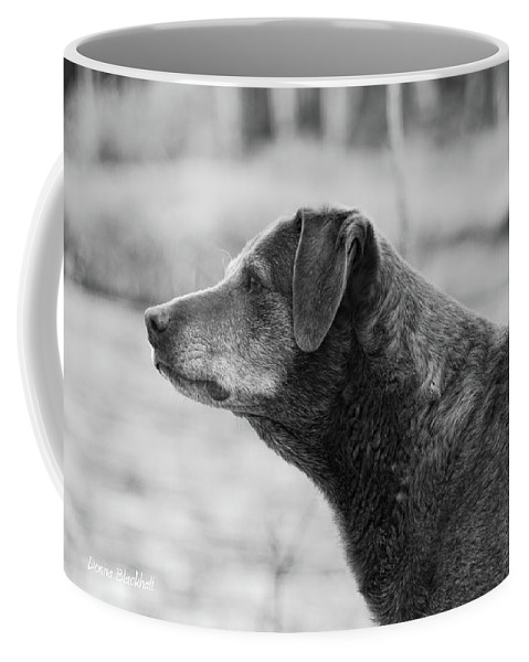 Dog Coffee Mug featuring the photograph Standing Watch by Donna Blackhall