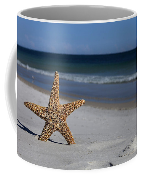Starfish Coffee Mug featuring the photograph Starfish Standing On The Beach by Anthony Totah