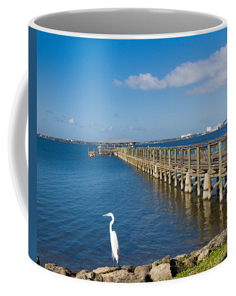 Florida; Melbourne; Beach; Atlantic; Coast; East; Space; Pier; Pineapples; Steamboat; Load; Cargo; I Coffee Mug featuring the photograph Steamboat Landing Ot Melbourne Beach In Florida by Allan Hughes