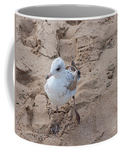 Gull Coffee Mug featuring the photograph Step Right Up by Ann Horn