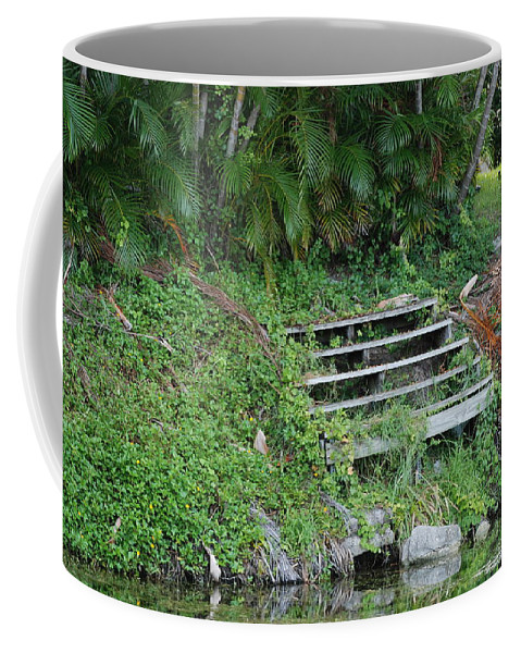 Grass Coffee Mug featuring the photograph Steps In The Grass by Rob Hans