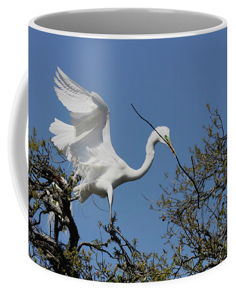 Coffee Mug featuring the photograph Stick Coming In by Deborah Benoit