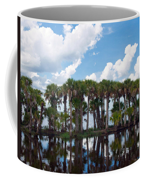 Florida; Water; Canal; Stick; Marsh; Drowned; Trees; Drown; Fellsmere; Sebastian; River; Indian; Clo Coffee Mug featuring the photograph Stick Marsh In Fellsmere Florida by Allan Hughes