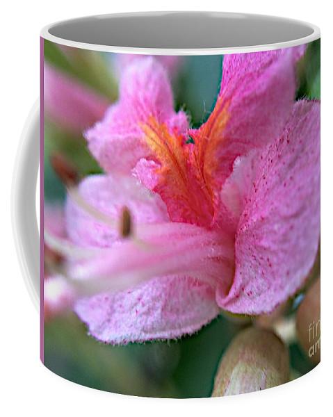 Flower Coffee Mug featuring the photograph Still Deeper by Joseph Yarbrough