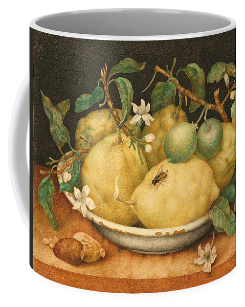 Giovanna Garzoni Coffee Mug featuring the painting Still Life With Bowl Of Citrons by Giovanna Garzoni
