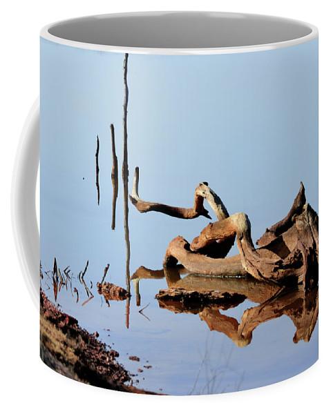 Tree Coffee Mug featuring the photograph Still Water by Betty LaRue