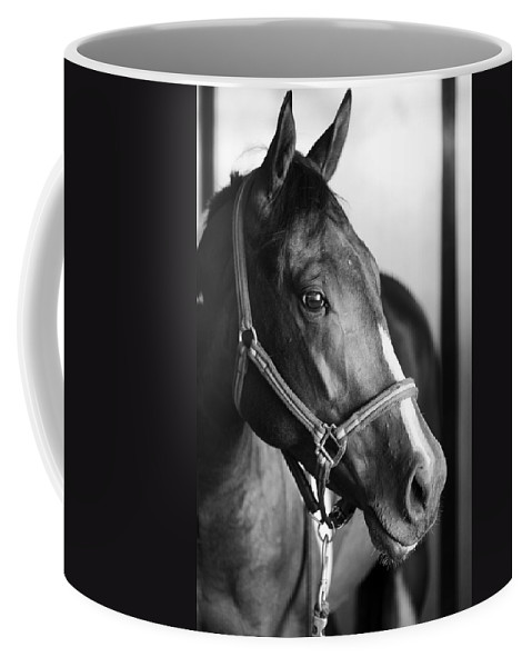 Horse Coffee Mug featuring the photograph Horse And Stillness by Marilyn Hunt