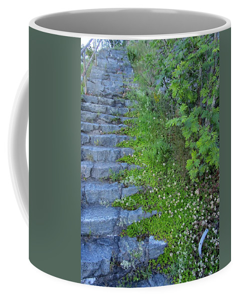 Blue Coffee Mug featuring the photograph Stone Steps by Rosita Larsson