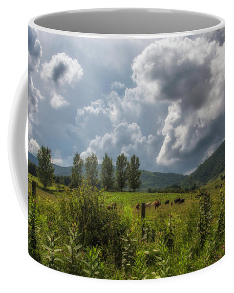 Virginia Coffee Mug featuring the photograph Storm And Cattle by Anthony Zeljeznjak
