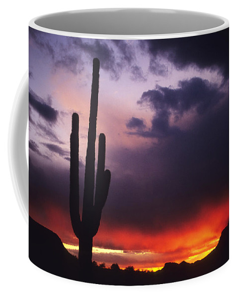Saguaro National Park Coffee Mug featuring the photograph Storm Clouds Pass Over A Saguaro Catus by Bill Hatcher