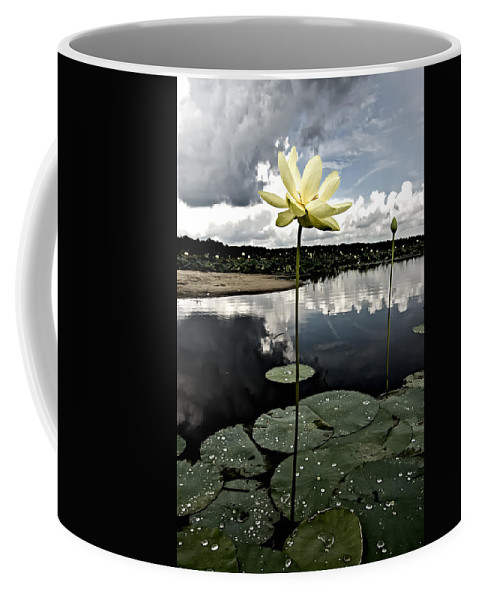 Lotus Coffee Mug featuring the photograph Stormy Lotus by Rich Leighton