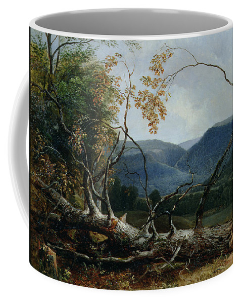 New England; American Landscape; Mountains; Fallen Tree; Trunk; Mountainous; Stratton Mountain; Hudson River School; The Fall Coffee Mug featuring the painting Stratton Notch - Vermont by Asher Brown Durand