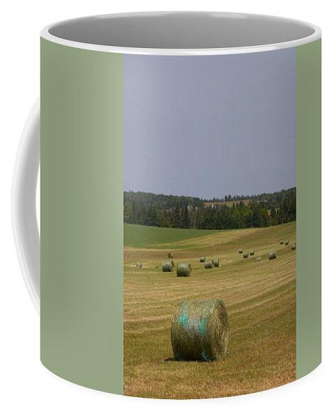 Prince Edward Island Coffee Mug featuring the photograph Straw Dries In A Farmers Field by Taylor S. Kennedy