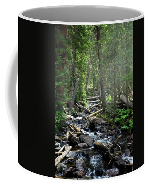 Waterfall Coffee Mug featuring the photograph Streaming Through The Trees by Alisha Jurgens