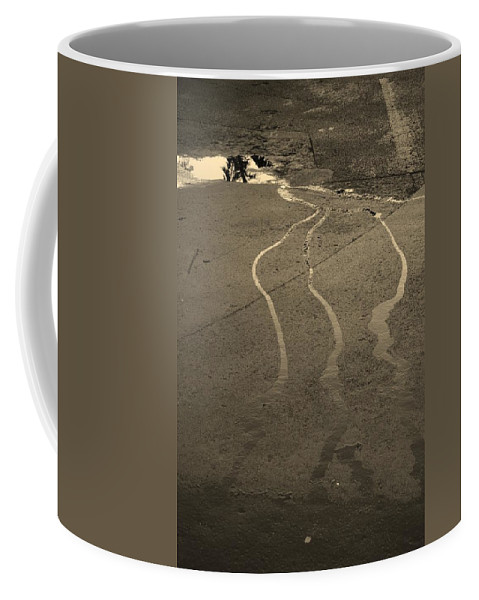 Water Coffee Mug featuring the photograph Streams In The Lot by Rob Hans