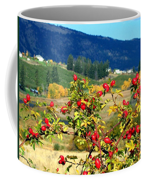 Autumn Coffee Mug featuring the photograph Striking Autumn Red by Will Borden