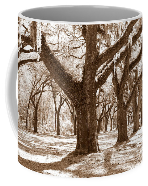 Sepia Coffee Mug featuring the photograph Strong And Proud In The South by Carol Groenen