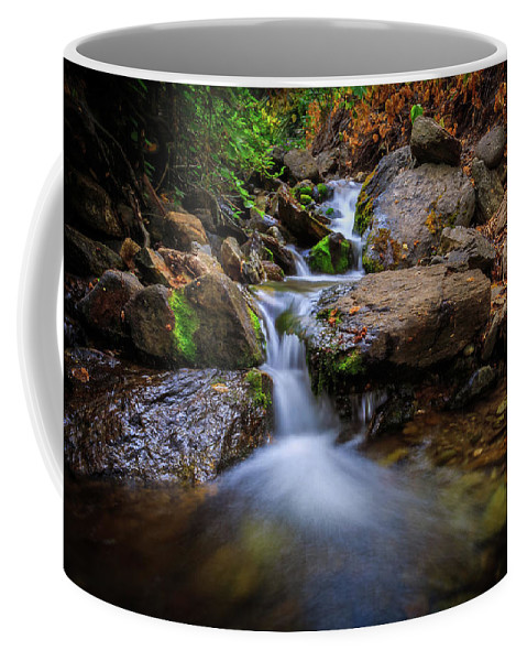 Trailsxposed Coffee Mug featuring the photograph Strongs Canyon Cascades by Gina Herbert