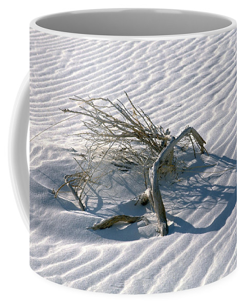White Sands Coffee Mug featuring the photograph Struggle To Survive by Sandra Bronstein