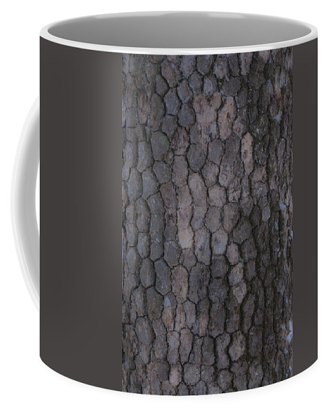 Grey Coffee Mug featuring the photograph Studies In Grey by Douglas Barnett
