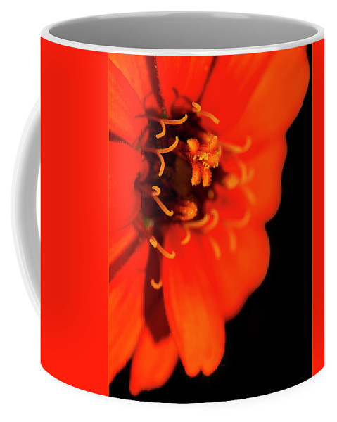 Flower Coffee Mug featuring the photograph Study In Red by Guy Shultz