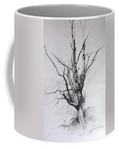 Landscape Coffee Mug featuring the drawing Study Of A Tree by Harry Robertson