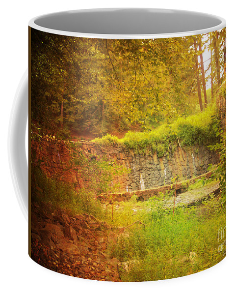 Rock Coffee Mug featuring the photograph Stumbled Upon by Paulette B Wright