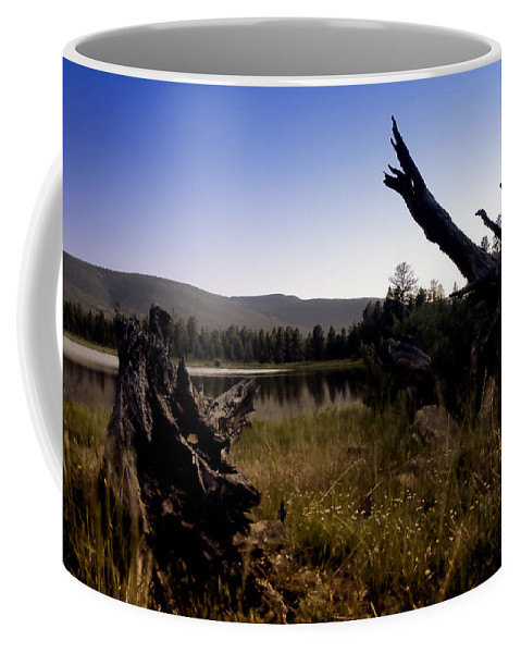 Nature Coffee Mug featuring the photograph Stumped By The Lake by John K Sampson