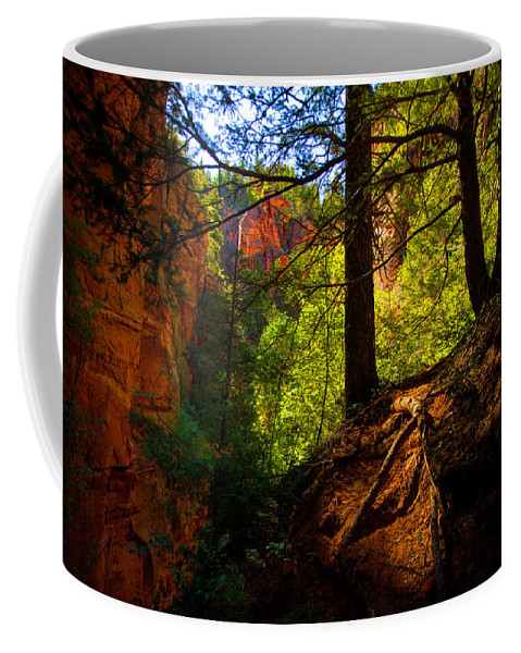Outdoor Coffee Mug featuring the photograph Subway Forest by Chad Dutson