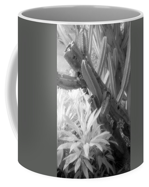 Infrared Film Coffee Mug featuring the photograph Succulent Delight by Richard Rizzo