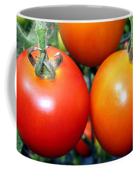 Tomatoes Coffee Mug featuring the photograph Succulent Tomatoes by Will Borden