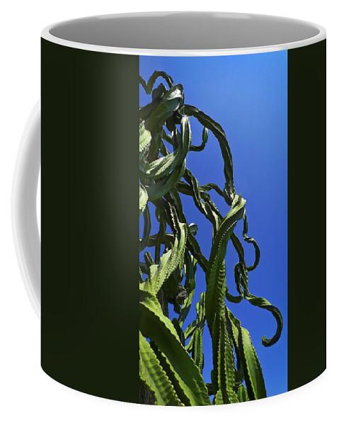 Sugar Pants Coffee Mug featuring the photograph Sugar Pants by Skip Hunt