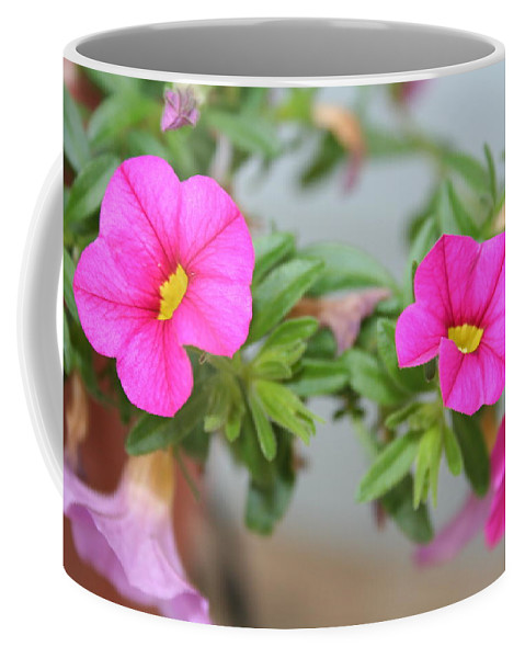 Flowers Coffee Mug featuring the photograph Summer Flowers by Linda Sannuti